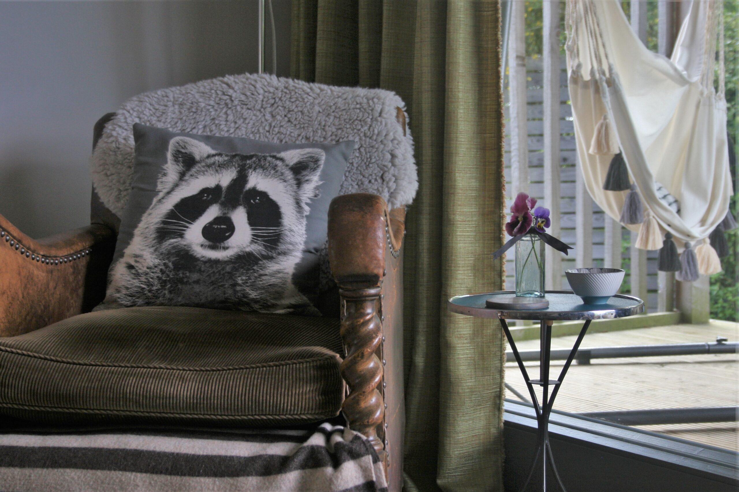 armchair & hammock
